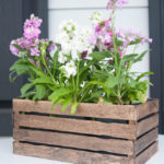 Paint Stick Planter Basket