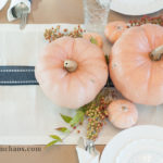 Thanksgiving Series Part 2: A Casual Tablescape